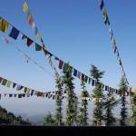 mcleod ganj - himalayan glimpses